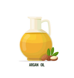 Fresh argan oil glass bottle with seeds and leaves vector