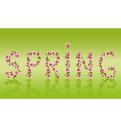 Spring word sakura tree Japanese cherry blossom vector