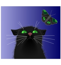 cat butterfly vector image vector image