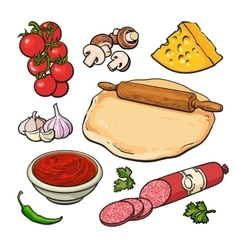 Set of sketch style pizza ingredients vector image