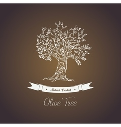 Greece olive tree logo with branches vector image vector image