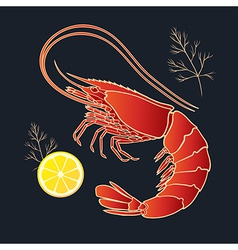 Shrimp with lemon and dill vector image vector image