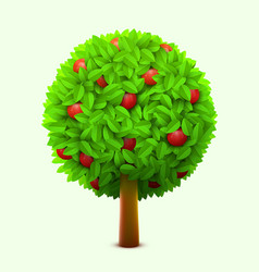 cute apple tree with green leaves and red ripe vector image