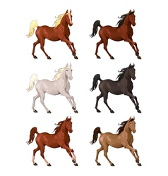 Horses in different colors vector