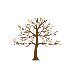 leafless tree icon design template isolated vector image