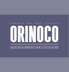 orinoko condensed extrabold san serif font vector image