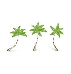 palm trees collection realistic palm trees three vector image