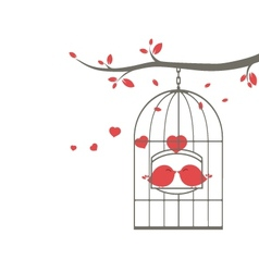 Love birds on the cage vector image
