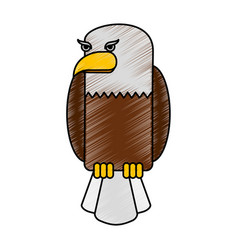american eagle isolated icon vector image