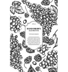 card design with black and white grapes hop vector image