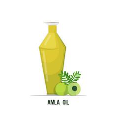 Fresh amla oil glass bottle with green berries vector