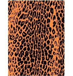 leopard pattern background vector image