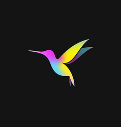 abstract hummingbird creative bird on black backgr vector image