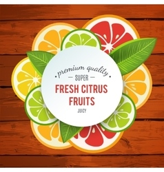 Banner with stylized citrus fruit and splashes vector