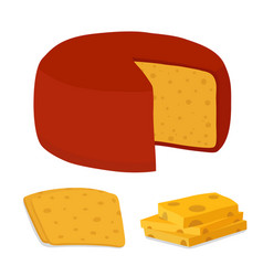 Gouda cheese blockpiececartoon flat style vector
