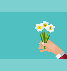 hand a man holds spring narcissus flowers vector image