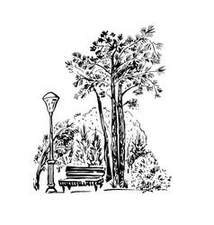 park scene hand drawn vector image
