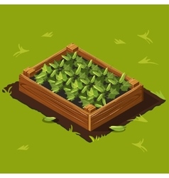 Vegetable Garden Box with Cucumbers Set 2 vector