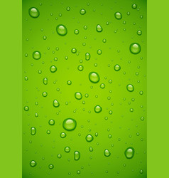 Water drop at green vector