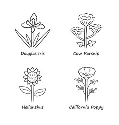 Wild flowers linear icons set douglas iris cow vector
