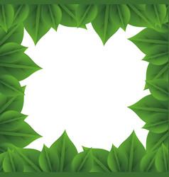 frame of leaves vector image