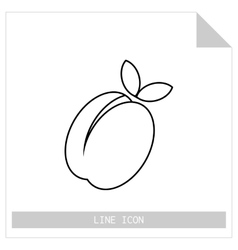 Apricot peach Flat linear icon of fruit vector image vector image