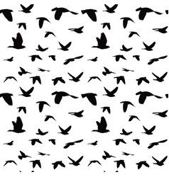 flock of doves seamless pattern vector image