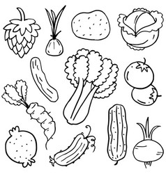 Doodle of vegetable set art vector