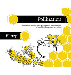 honey store pollination hand drawn banner vector image