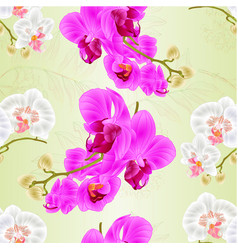 seamless texture stems orchids white and purple vector image
