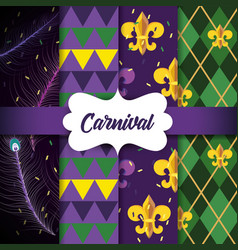 set feathers with geometirc figures and mardi gras vector image