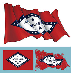 Waving flag of the state of arkansas vector