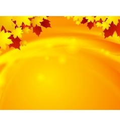 Orange autumn maple leaves and waves vector image