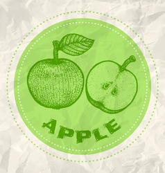 apple vintage paper vector image vector image