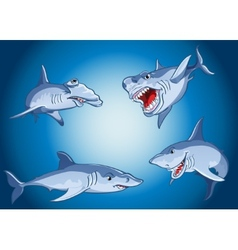 Set of scary sharks in cartoon style vector image vector image