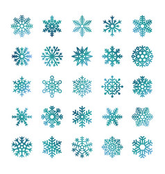 colorful snowflakes isolated on white vector image