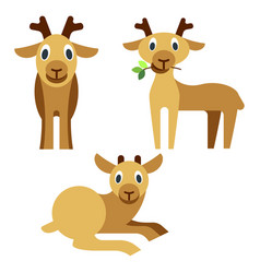 cute baby deer that lies and eats grass vector image