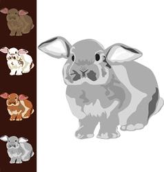Funny bunny vector