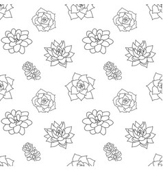 Hand drawn seamless pattern succulent in style vector