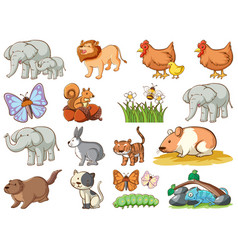 large set wildlife with many types animals vector image