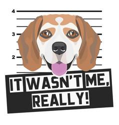 Mugshot mug shot beagle vector