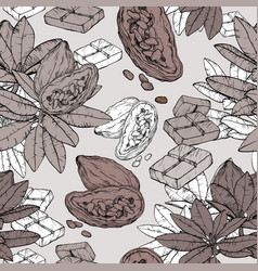 samless pattern with chocolate cocoa plant vector image