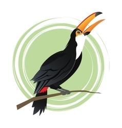 Tuncan bird cartoon design vector image