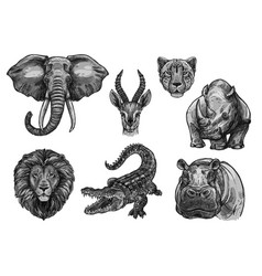 Wild animals sketch icons for african zoo vector