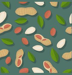 peanut seamless pattern vector image