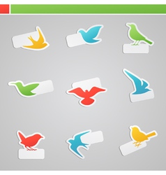 set of multicolored birds with tags vector image vector image