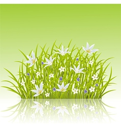 Cartoon of spring grass background vector