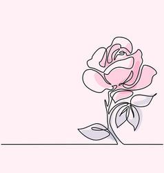 Drawing of beautiful rose flower vector