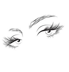 Female eyes drawing long eyelashes vector