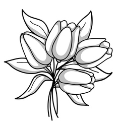 Monochrome bouquet tulips black white gray vector